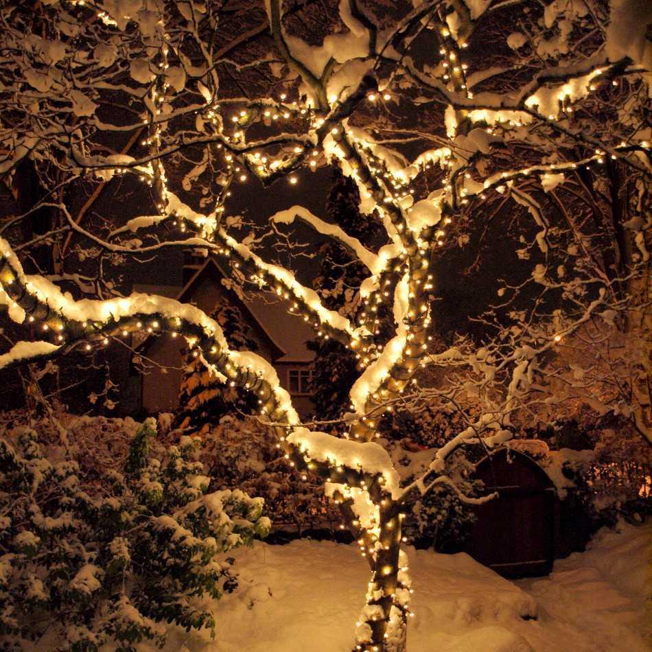 ногтей, новогоднее дерево с гирляндой картинки коренная